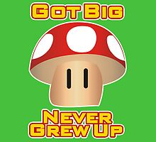 Super Mario Mushroom by RoamingGeek