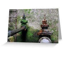 Nature wins! Greeting Card