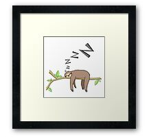 Sleeping sloth Framed Print