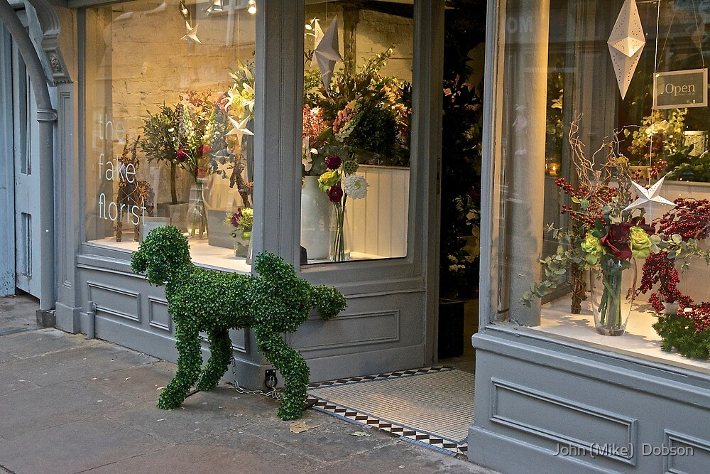 Shop Display in York by John (Mike)  Dobson