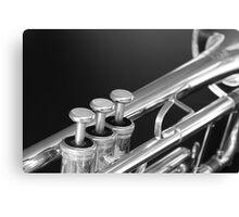 Trumpet close up Canvas Print