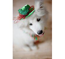 All I got for Christmas Photographic Print
