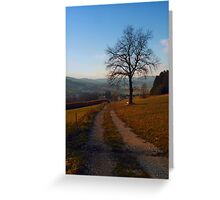 Tree, trail and indian summer evening | landscape photography Greeting Card