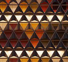 SAHMRI facade by Robert Dettman