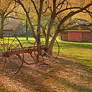 Morning At Bouman Stickney Farm by Pat Abbott