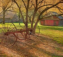 Morning At Bouman Stickney Farm by Pat Abbott