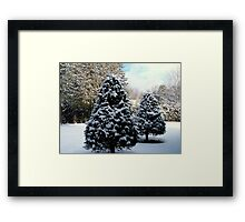 Merry Christmas, Happy Holidays all the Best in 2014 to all my RB Friends. Framed Print