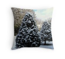 Merry Christmas, Happy Holidays all the Best in 2014 to all my RB Friends. Throw Pillow