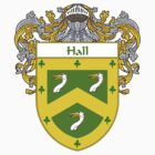 Hall Coat of Arms/Family Crest by William Martin