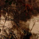 Flood Water And River Bank Abstract by Mike  Waldron