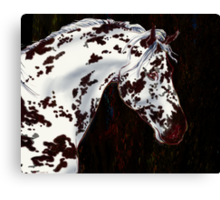 Spot in the Dark Canvas Print