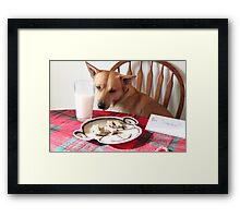 Are these for Santa? Framed Print