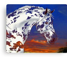 Spot in a Sunset Canvas Print