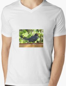 Bird Mens V-Neck T-Shirt