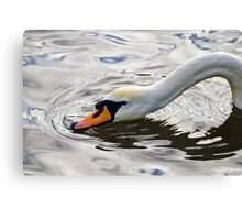 Sipping The Cool Water Canvas Print