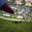 Shadow Flyer  by DearMsWildOne
