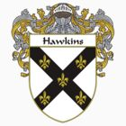 Hawkins Coat of Arms/Family Crest by William Martin