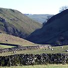 Hall Dale by Paul  Green