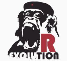 R - Evolution by SeijiArt