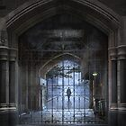 The gatekeeper by Adrian Donoghue
