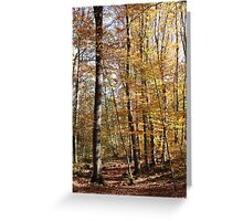 Orange colours Greeting Card