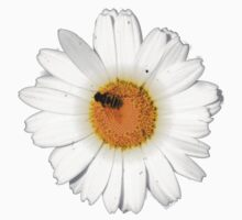 Daisy and Bee by Richard Heby