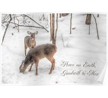 Holiday Whitetail Deer Card - Snowy Woods Poster