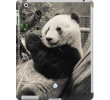 The Sound Of Bamboo iPad Case/Skin