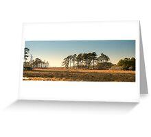 Chincoteague Plains - Chincoteague National Wildlife Refuge, Virginia Greeting Card