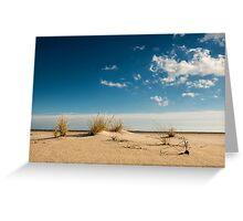 American Beachgrass - Assateague Island National Seashore, Maryland Greeting Card