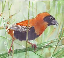 The Red Bishop 1 by Maree  Clarkson