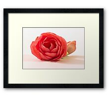 Beauty In Imperfection Framed Print