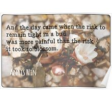 The Risk to Blossom Poster