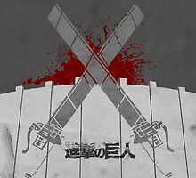 SNK - Conquer the Wall by beachqueen17
