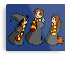 Harry, Ron and Hermione Metal Print