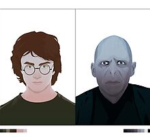 Harry vs Voldemort by Brian J. Smith (Dangerous Days)