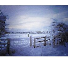 View with a fence Photographic Print