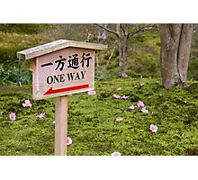 One way warning sign Photographic Print