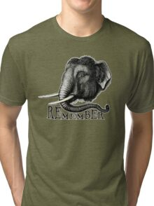 Remember. Tri-blend T-Shirt