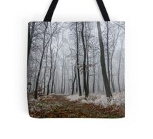 Frosty walk Tote Bag