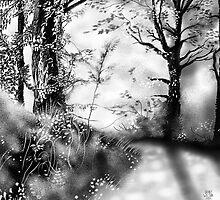 Woodland scene by Grant Wilson