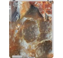 Lake Superior Agate Botryoidal Surface iPad Case/Skin