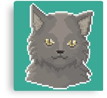 Pixel Cat - Fluffy version Canvas Print