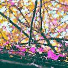Falling Autumn Petals by Susan Tong