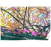 Falling Autumn Petals Poster