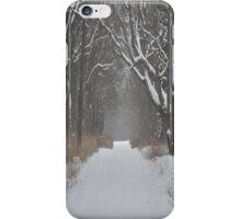 Snowy Road iPhone Case/Skin