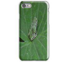 Froggy Phone Case iPhone Case/Skin