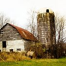 BARN AND SILO by Pauline Evans