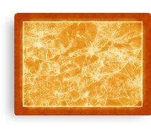 Mixed color Poinsettias 3 Outlined Orange Canvas Print