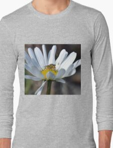 Daisy And Guest Long Sleeve T-Shirt